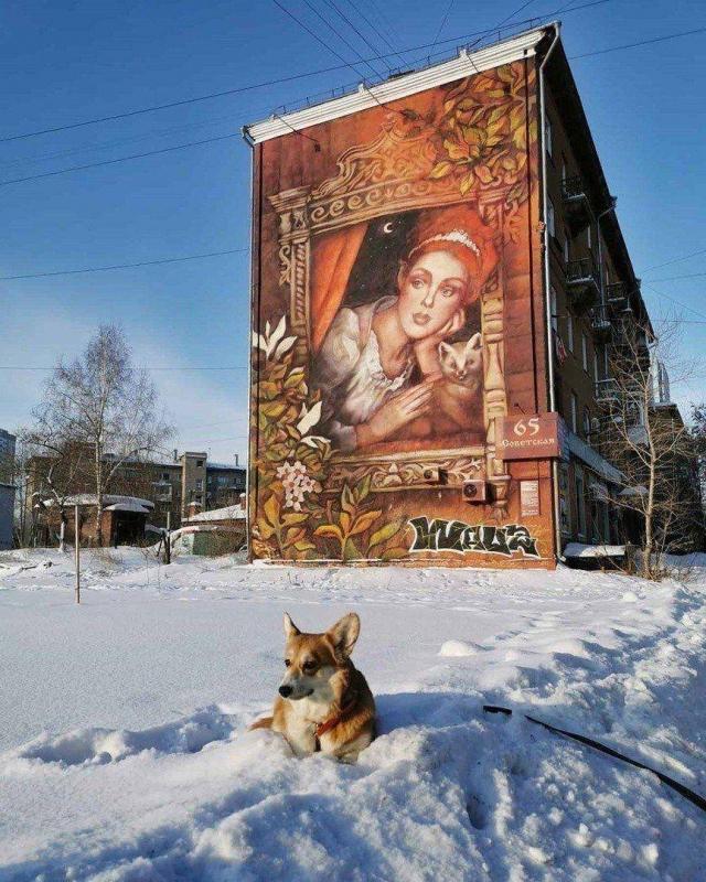 Фотоподборка Дня - 3227 (53 фото)