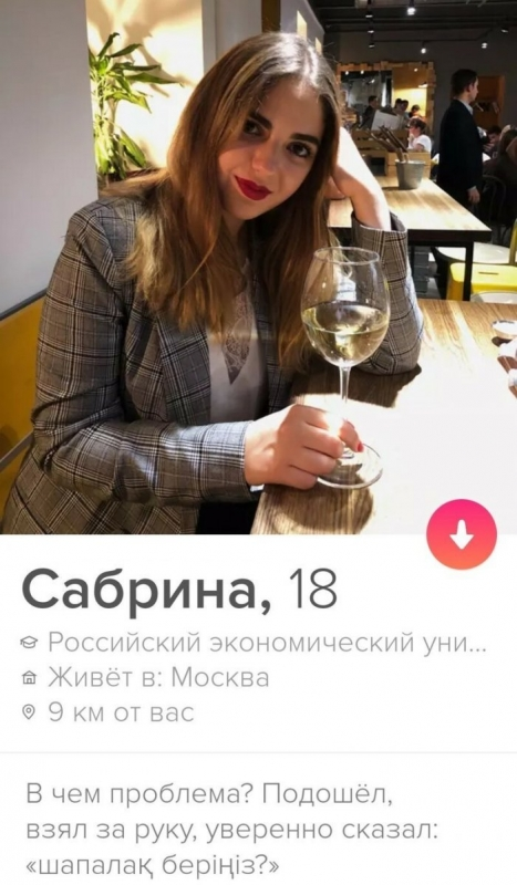 Необычные анкеты девушек на сайтах знакомств (14 фото)