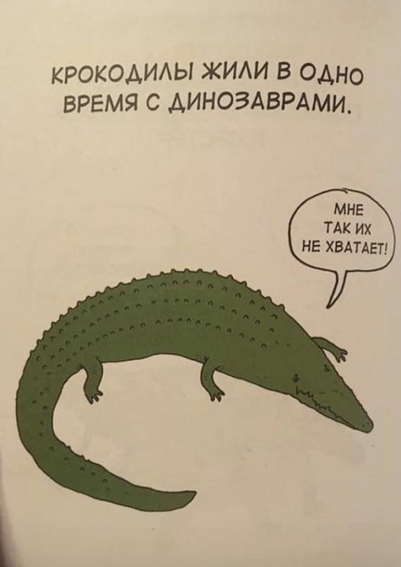 Интересные факты о животных (20 фото)
