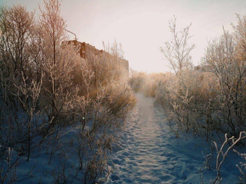 Фотоподборка Дня - 3420 (55 фото)