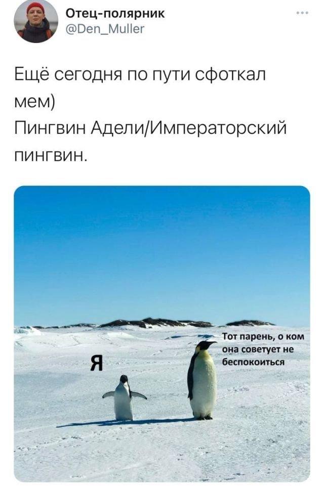 Полярник о своих впечатлениях об Антарктиде (10 фото)