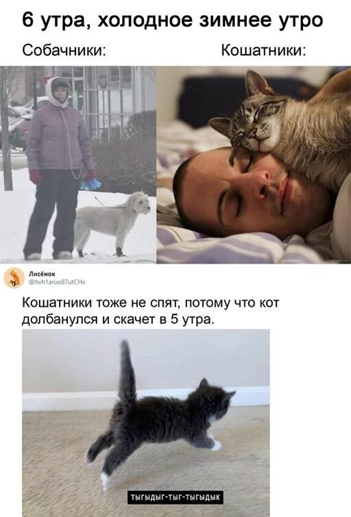 Скриншоты из социальных сетей. Часть 1232 (30 фото)