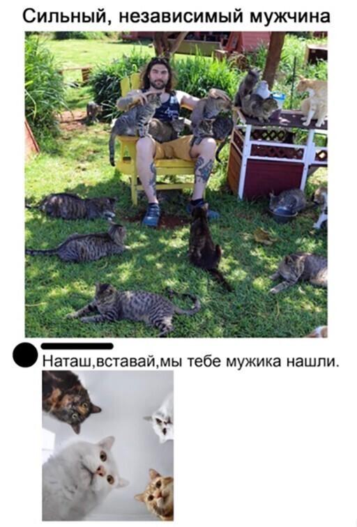 Скриншоты из социальных сетей. Часть 1260 (41 фото)