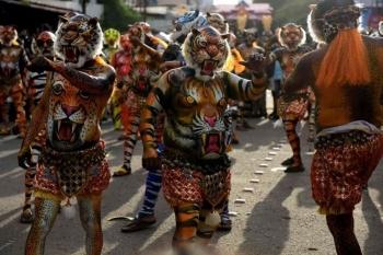 Фестиваль Пули Кали в Индии (12 фото) - «Хорошее настроение»