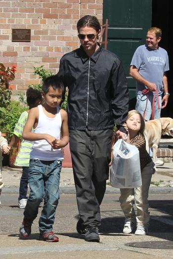 Причины, по которым Анджелина Джоли разводится с Брэдом Питтом ! - «Фото»