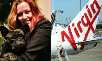 Авиакомпания Virgin расследует смерть бульдога на борту самолета (7фото)