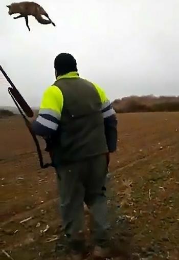 Издевательство охотника над раненой лисой возмутило и охотников, и зоозащитников (4фото)