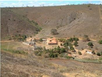 Как бразильский фотограф восстановил лес с 2,7 млн деревьев за 20 лет (3фото)