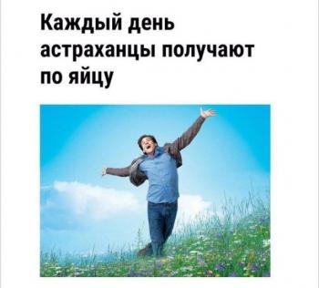Забавные новостные заголовки (23 фото)