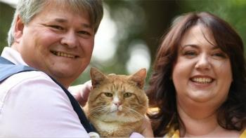 Кот Печенька помог английской паре стать миллионерами (4фото)