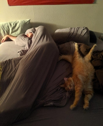Когда ты спишь не так, как все (17 фото)