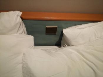 Неприятные сюрпризы в гостиницах (15 фото)