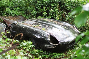 Восстановление старого Jaguar, который 30 лет гнил в кустах (20 фото)