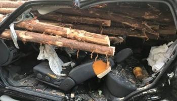 Водитель чудом почти не пострадал в страшной аварии (3 фото)
