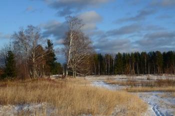 Фотоподборка Дня - 3276 (54 фото)