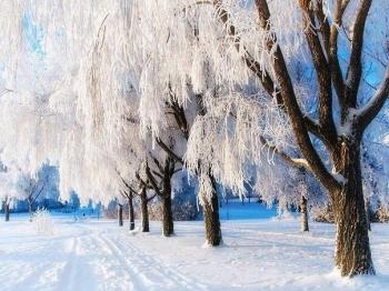 Фотоподборка Дня - 3278 (51 фото)