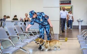 Самый позитивный полицейский России (10 фото)