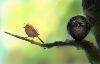 Кто успешнее в жизни - жаворонки или совы?