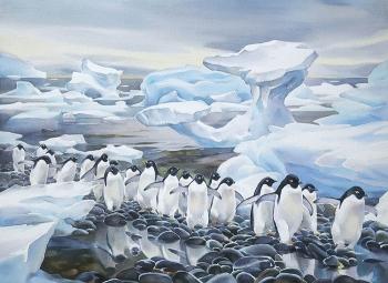 Что узнали люди после открытия Антарктиды - «Фото»