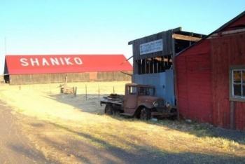 Шанико - опустевший город с коллекцией редких автомобилей (13 фото)