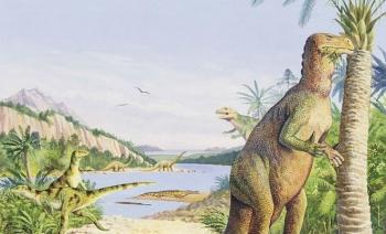 В скале нашли окаменелого динозавра - «Фото»